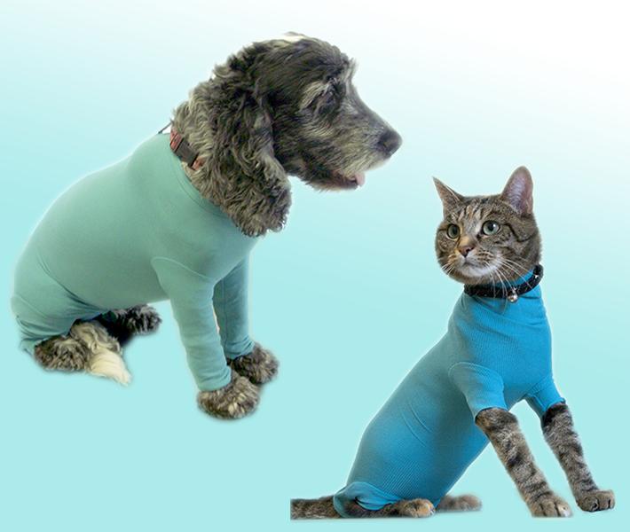antiwurmmittel für katzen